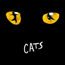 Cats the musical on tour
