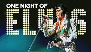 one night of elvis tour